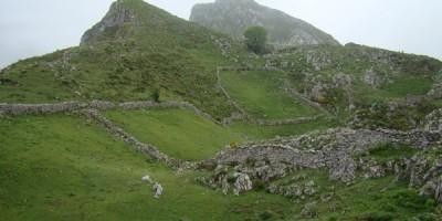 Picu el Paisanu- La Casona de Tresgrandas