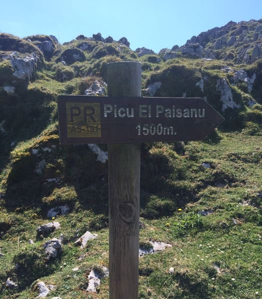 Senderismo- Ruta el Picu el Paisanu