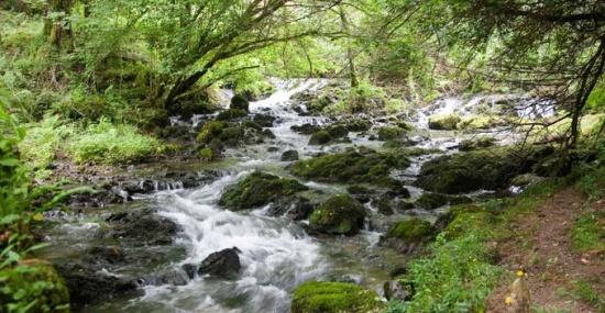 Ruta de los colores del valle oscuro - Nacimiento del Rio Cabra