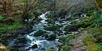 Nacimiento del Rio Cabra