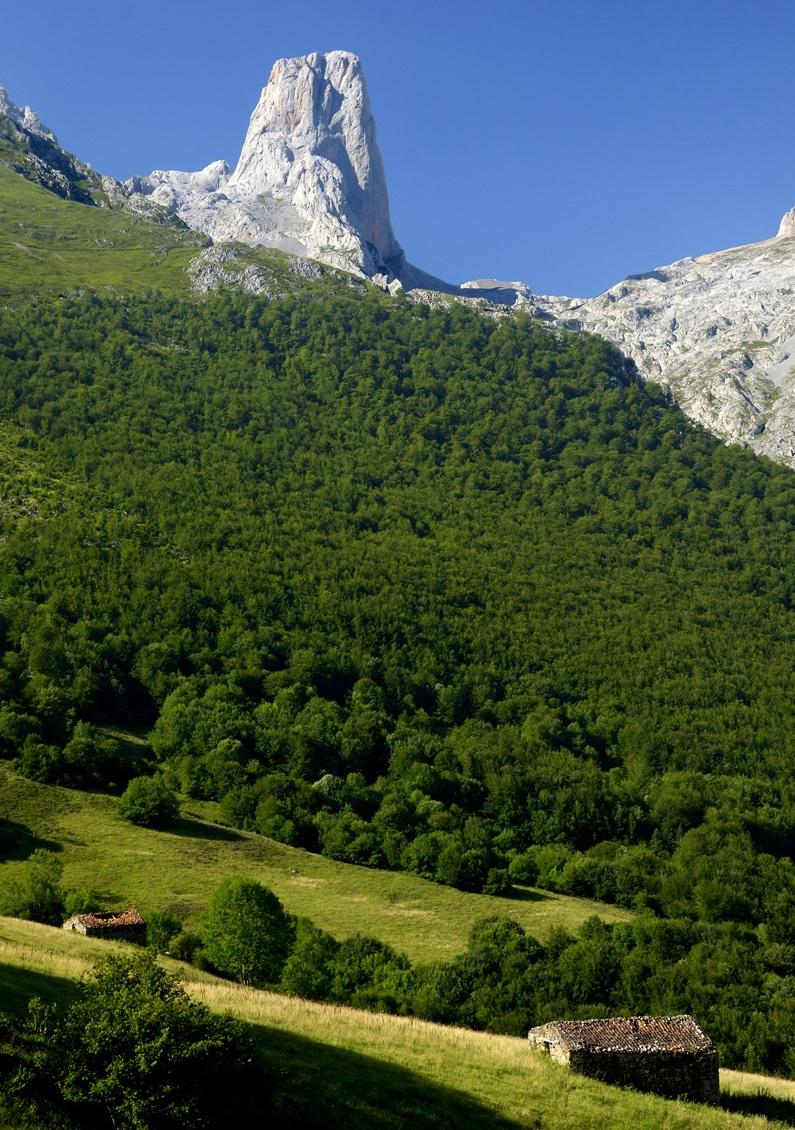 Naranjo de Bulnes (Picu Urriellu) desde las cercanías de Bulnes.