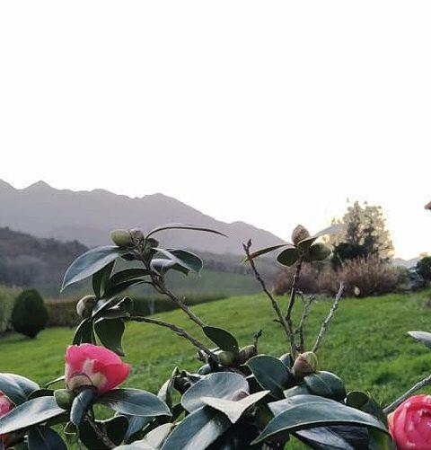 Oferta San valentin en Asturias- Llanes- hotel Puerta del Oriente